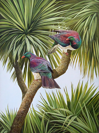 craig platt nz native bird artwork and oil paintings